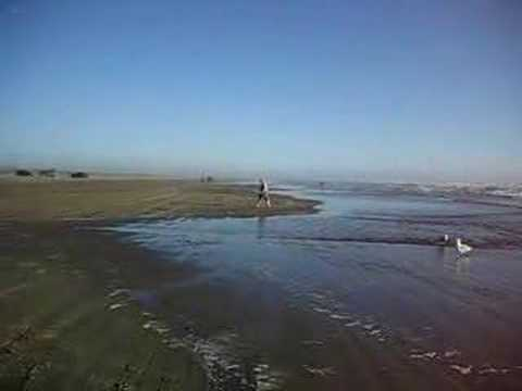 The Pacific Ocean from Ocean Shores Beach