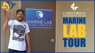 Marine Lab Tour at Concordia University Irvine: 2000 Gallons with 50 Local Species!