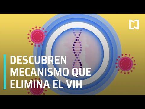 Descubren nuevo mecanismo que elimina el VIH del cuerpo - Las Noticias