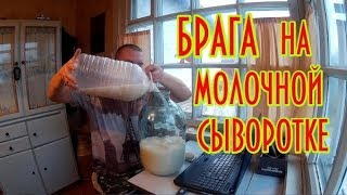 Брага на молочной сыворотке! Эксперимент! Часть 1