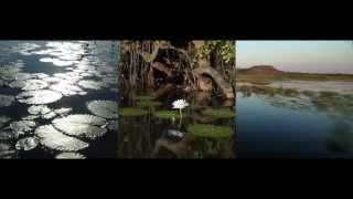 Australia  paesaggi naturali
