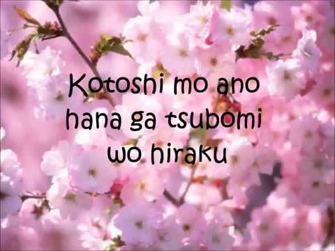 Sakura Ikimono Gakari Lyrics Letra