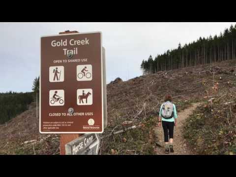 Hiking Green Mountain Near Bremerton