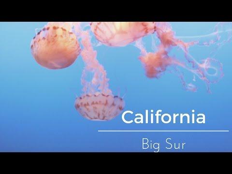 California - Big Sur Trip