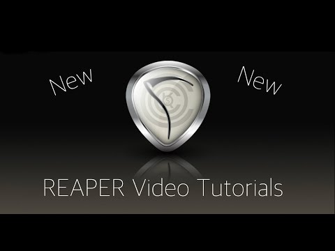 REAPER 5 Explained - 26. The Project Media/FX Bay