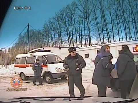 Инспекторы ГИБДД помогли женщине, которую покусала собственная собака