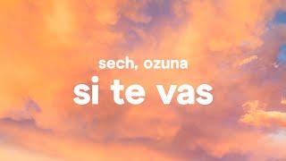 Sech, Ozuna ‒ Si Te Vas (Letra)