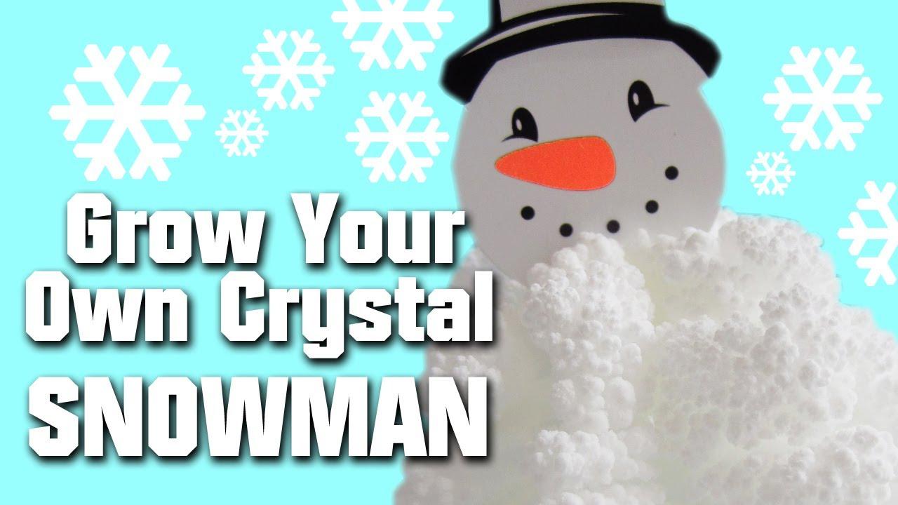 grow your own crystal snowman kit youtube