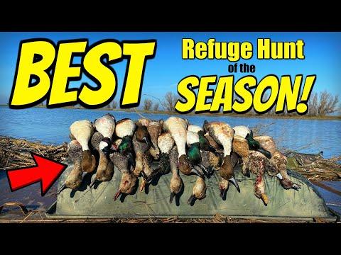 Duck Hunting – BEST Refuge DUCK HUNT of the SEASON!