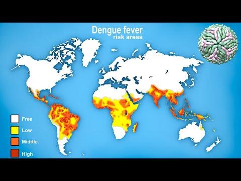 Deadliest Viruses Showed By Maps (Coronavirus, Ebola, HIV)
