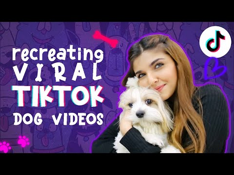 RECREATING VIRAL TIKTOK DOG VIDEOS! 🐶 *hilarious*   Ashi Khanna