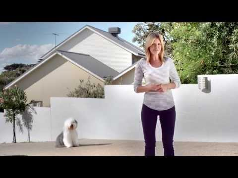 How To Paint Exteriors: Dulux Weathershield Render Refresh