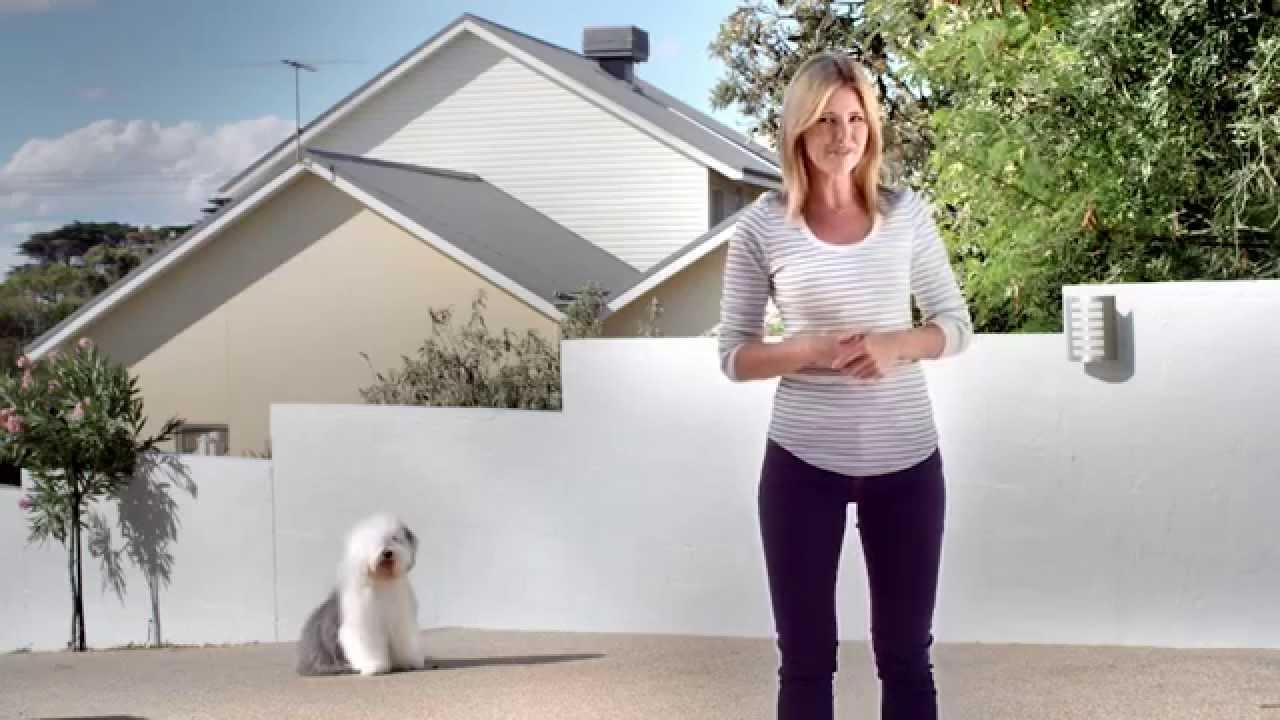 How To Paint Exteriors Dulux Weathershield Render Refresh