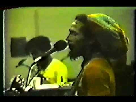 Bob Marley-Heathen