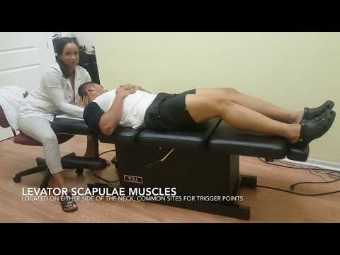 Chiropractic Adjustment - Daytona Beach Chiropractor