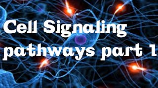 Cell Signaling Pathways part 1