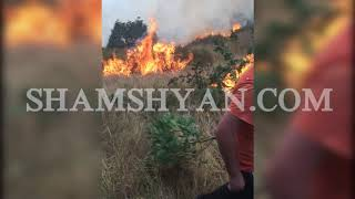 Բյուրականում գյուղացիները պայքարում են անտառում առաջացած հրդեհի դեմ