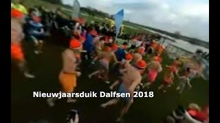Nieuwjaarsduik Dalfsen 2018 (360 graden opname)