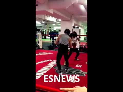 UFC Fighter Conor McGregor Sparring Boxing Star Chis Van Heerden - MMA vs Boxing