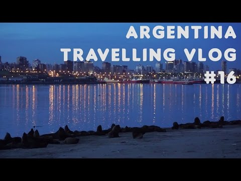 Old friends | Argentina | Travelling Vlog #16