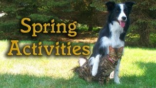 Spring Activities with Nana & Kaiser
