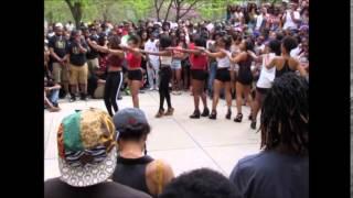 NPHC Yard Show Delta Sigma Theta 4/26/2014