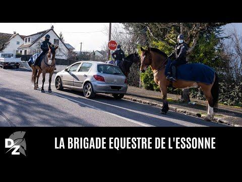 La brigade équestre de l'Essonne