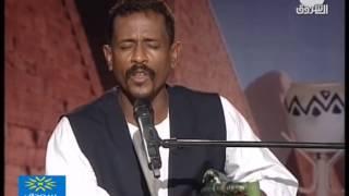 محمد النصري برضي غافر