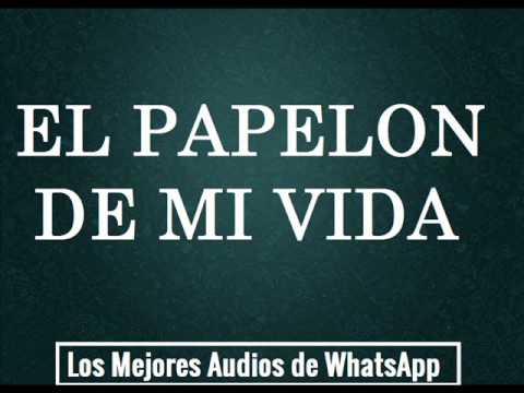 El papelon de mi vida - Los Mejores Audios de WhatsApp