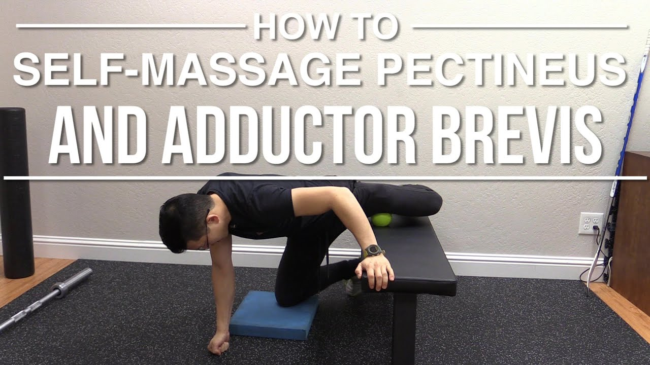 How To Self Massage Pectineus And Adductor Brevis Youtube