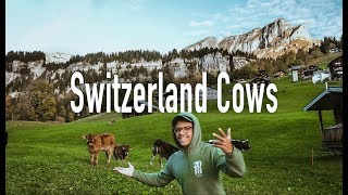 24 Hours in Switzerland