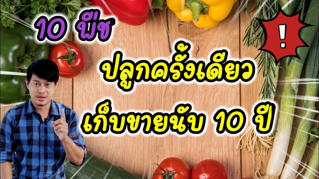 10 อันดับ ปลูกครั้งเดียวทำรายได้นานที่สุด #เกษตรชิวๆ #10อันดับ