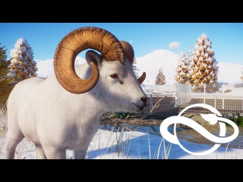 In depth look at the new Dall Sheep (Planet Zoo: Arctic Pack animal overview part #2)!! |