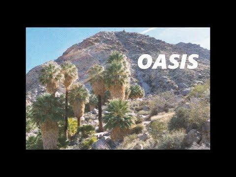 OASIS | lofi hip hop & chill mix