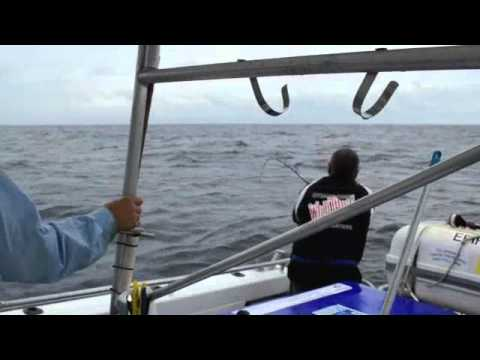 Offshore Fishing Noosa Charters