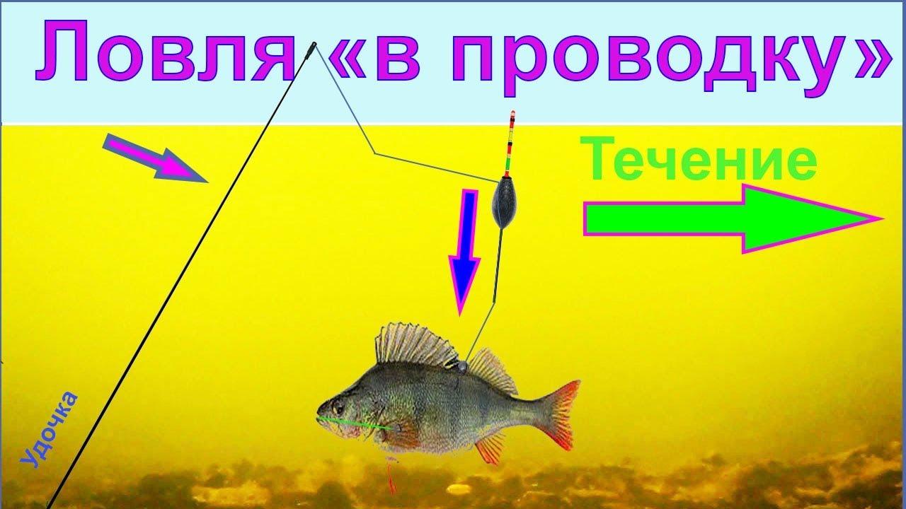 Ловля в проводку, неспортивная оснастка, огрузка, Рыбалка, Fishing angeln la pesca câu cá 钓鱼 рыбалка