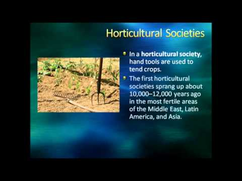 Sociology:  Society and Culture, Part I Review