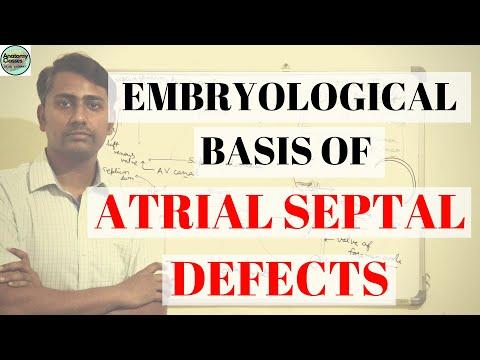 embryological-basis-of-atrial-septal-defect-#asd