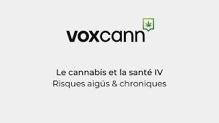 Projet VoxCann - Le cannabis et la santé IV: Risques aigus et chroniques