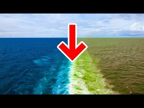 Why The Atlantic And Pacific Oceans Don't Mix