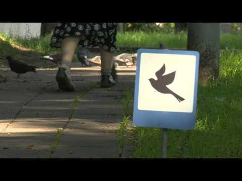 LRT EBU Lithuania Tiny Signs
