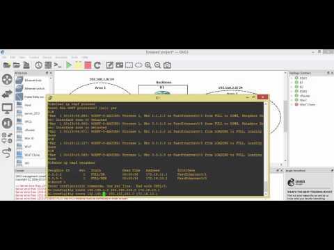 Multi-Area OSPF, NAT, VRRP & DHCP Topology