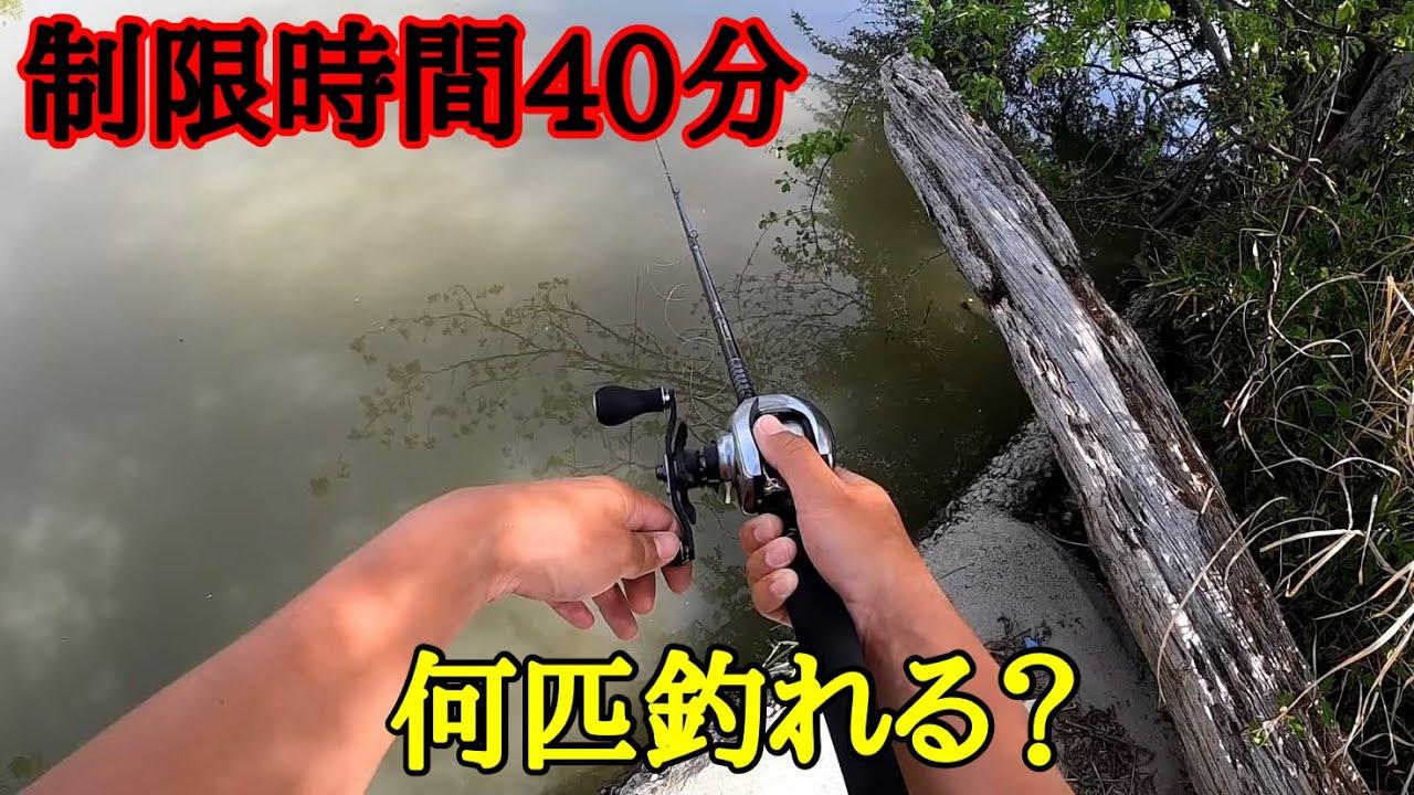 【バス釣り】短時間でため池を攻め尽くす!