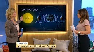 """Väderspecial: Det här är """"århundrandets tidvatten"""" - Nyhetsmorgon (TV4)"""