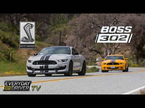 Shelby GT350 vs Boss 302 - The Best Mustangs Compared - Everyday Driver