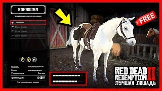 Red Dead Redemption 2 Tips