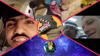 التمساح الحلقة ١٢١ : الكبتنية الحيوانية  | Temsa7LY