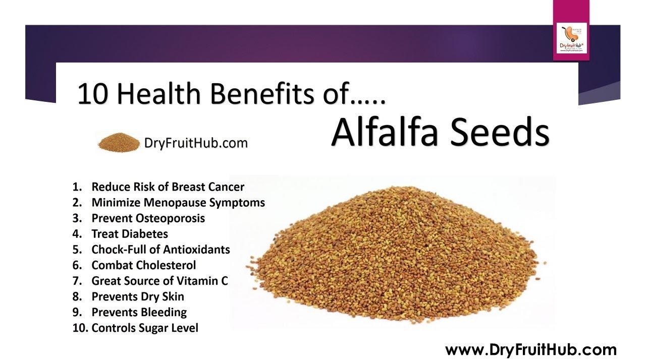 Health Benefits of Alfalfa