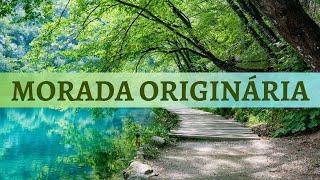 Taoísmo - Retornando à Morada Originária