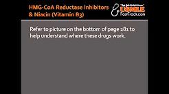 HMG-CoA Reductase Inhibitors (Statin Drugs) & Niacin (Vitamin B3)